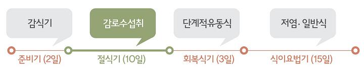 디톡스 다이어트 진행과정.jpg